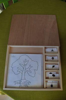 ma petite fabrique montessori: botanique