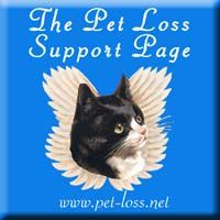 Compassionate help for those who are grieving the loss of a beloved animal companion.