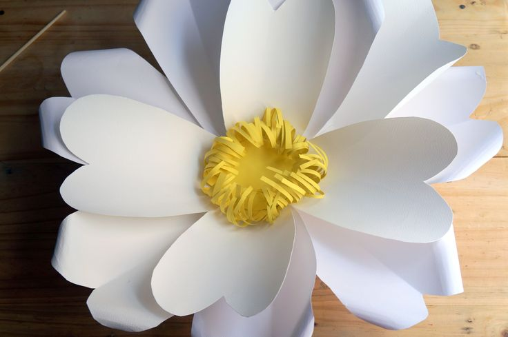 How to Make Giant Daisies  كيف تصنع زهرة الديزي الضخمة اعمال ورقية