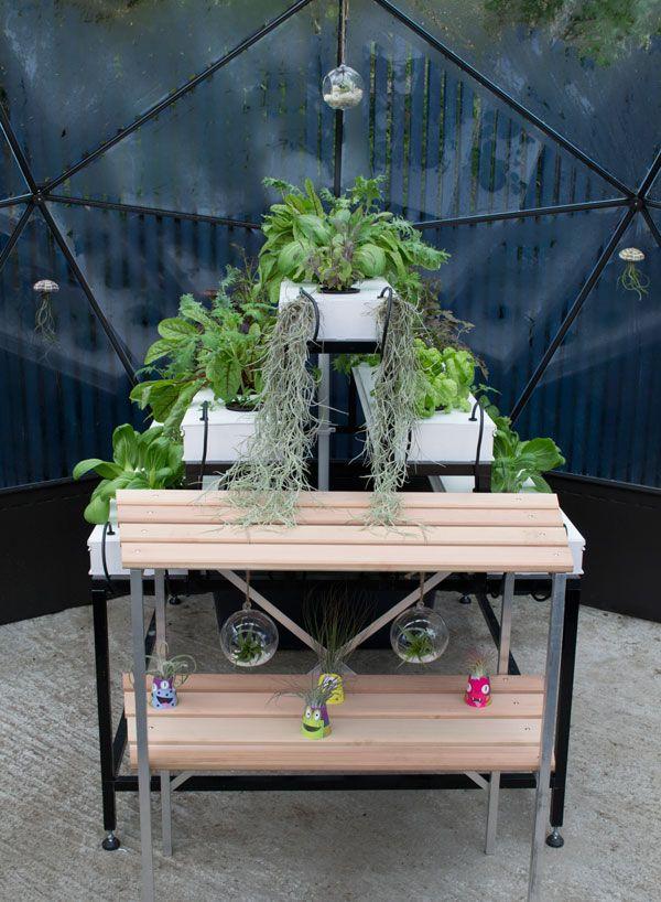 love-your-garden-solardome-plants
