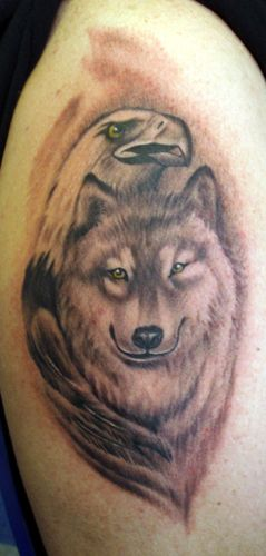 wolf tattoo gallery   post private pics have gray wolf cover created by wolf
