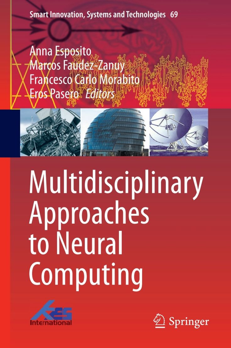 Multidisciplinary Approaches to Neural Computing (eBook