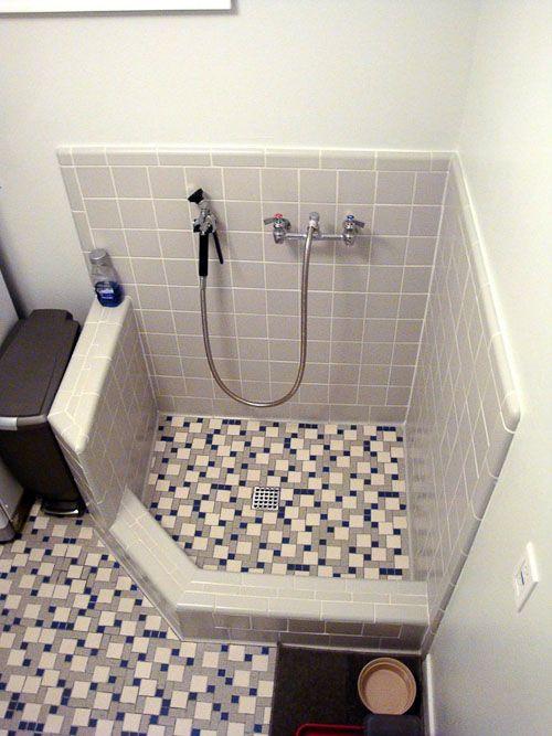 Best Shower Head To Wash Dog