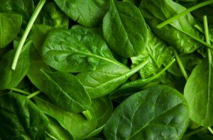 Oxalic acid not an issue when foods are eaten RAW