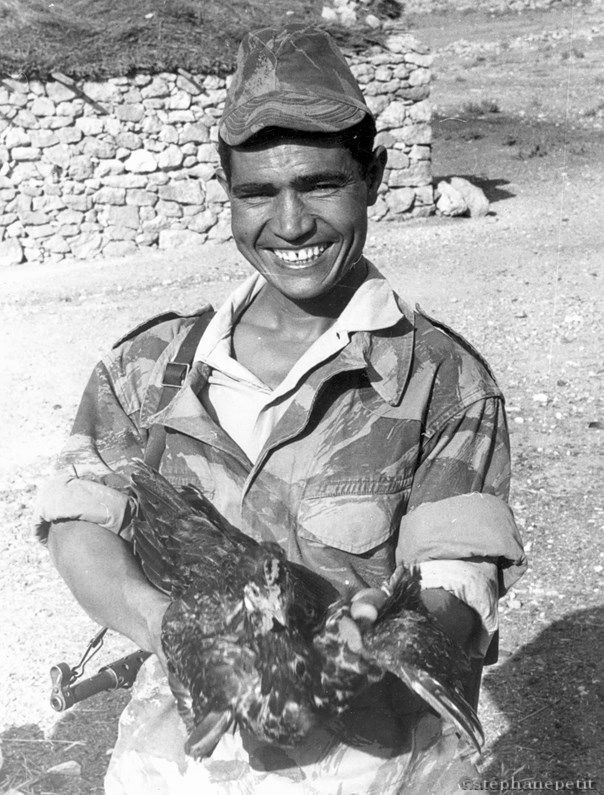 Un Harki - Algerie, pin by Paolo Marzioli