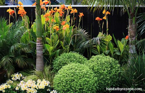 A stunning border garden of varying shapes and colours is offset by the dark fence in Resene Waterborne Woodsman Crowshead.  Project by Sandra Batley, photo by Sally Tagg, http://www.habitatbyresene.co.nz/sandra-and-johns-designer-oasis-suburbia
