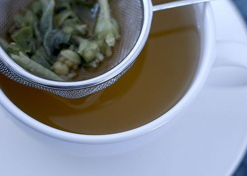Greek Mountain Tea — Elixer Of The Gods: Proven Effective Against Colds, Flus, Ulcers, h-plory, Osteoporosis Cancer