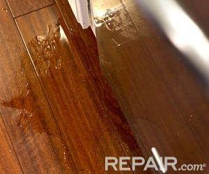 Dishwasher Leaking | Troubleshooting A Dishwasher Leak - Repair.com #DIY #repair #dishwasher