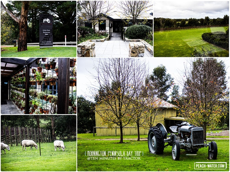One place I'll be going back to - great collage of Ten Minutes By Tractor winery & restaurant in Victoria