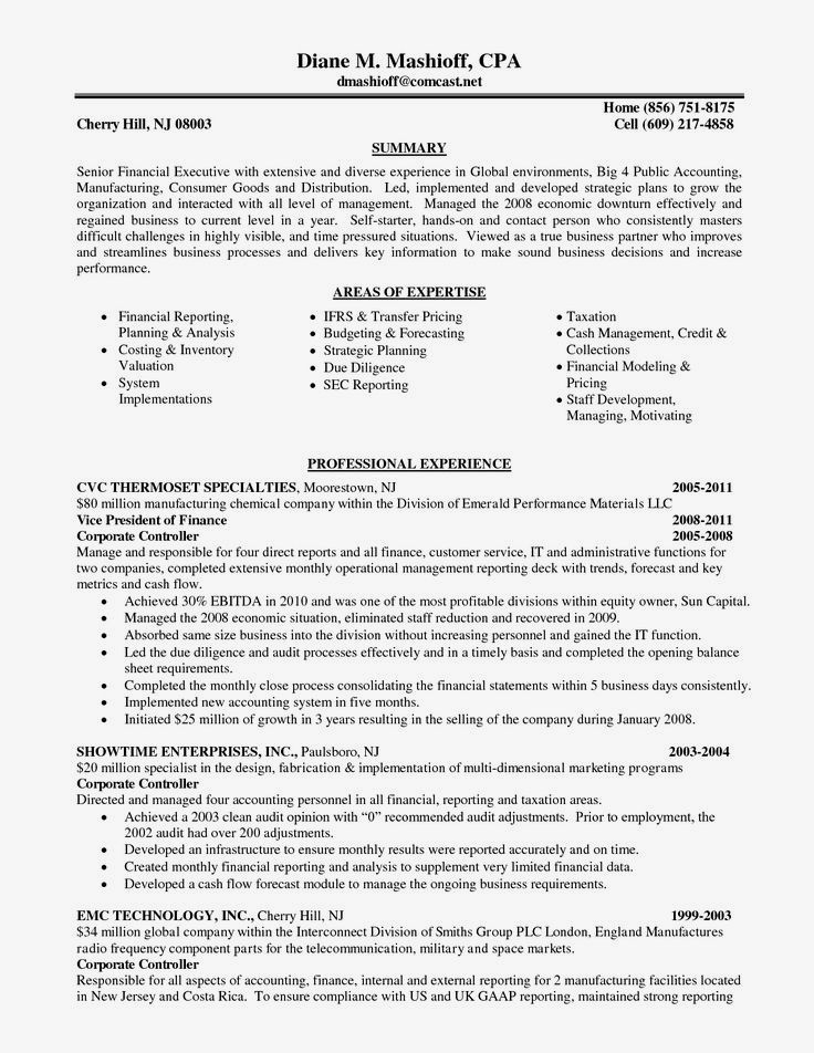 Big 4 Cv Template Cv Template Pinterest Sample resume and