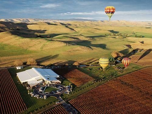 Sileni Estates Winery, 2016 Maraekakaho, Road, RD1, Hastings, New Zealand