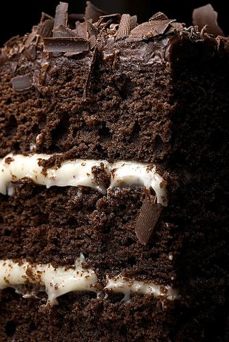 The Best Chocolate Layer cake.  Cream cheese frosting in the middle, chocolate cream cheese icing on the outside.  From Bake or Break!