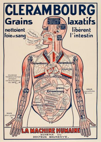 vintage medical poster Look inside the Human Body!!! Prints