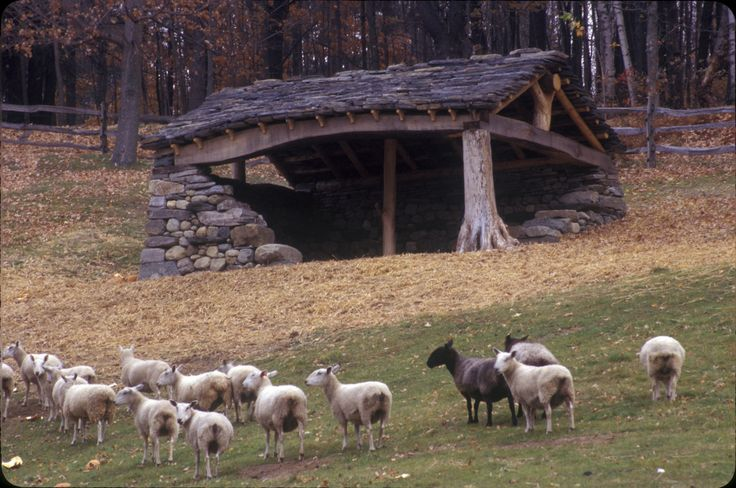 Sheep Shed | DAN SNOW STONEWORKS