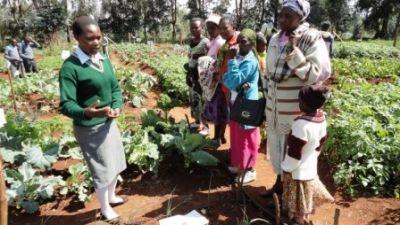 Ďalšia kenská škola je hrdá na svoju školskú záhradu