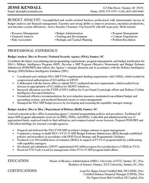 461 best Job Resume Samples images on Pinterest Resume templates - business intelligence resume