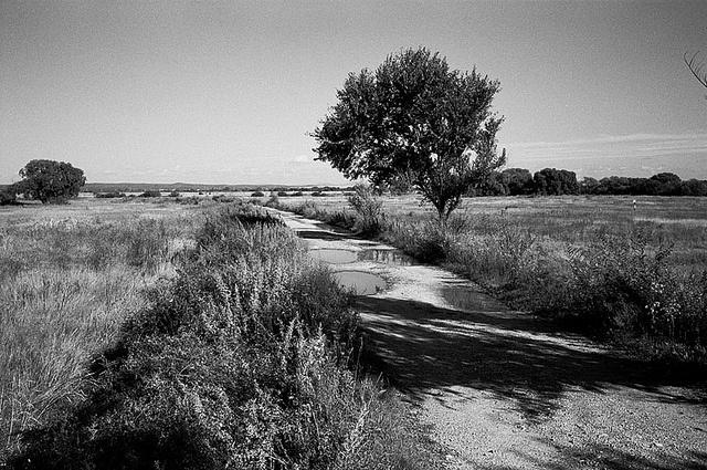 mikhailovka view by alexk., via Flickr