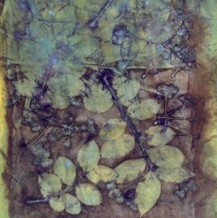 47 best images about eco print op papier en textiel on for The art and craft of natural dyeing