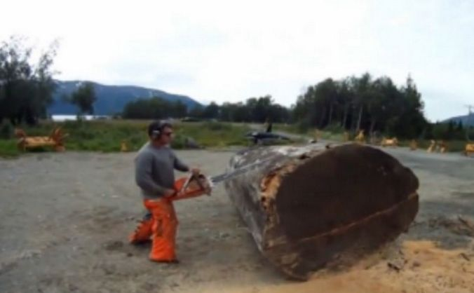 He Takes A Small Chainsaw To This Giant Chunk Of Wood. What He Creates In Just Hours? INSANE! Check more at http://daizydizzy.com/he-takes-a-small-chainsaw-to-this-giant-chunk-of-wood-what-he-creates-in-just-hours-insane/