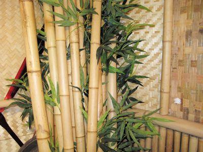9 best Bamboo Decor images on Pinterest | Bamboo wall, Cabana and Gazebo