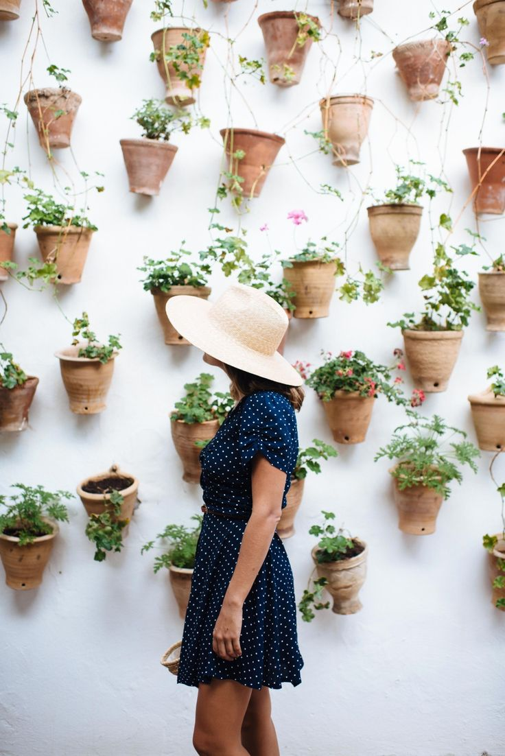 A bloggers guide to Cordoba, Spain. Eating, drinking, gardens.