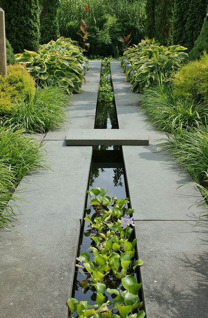 Dark grey stone, black water and bright green plants. symmetry and line vs. organic textures
