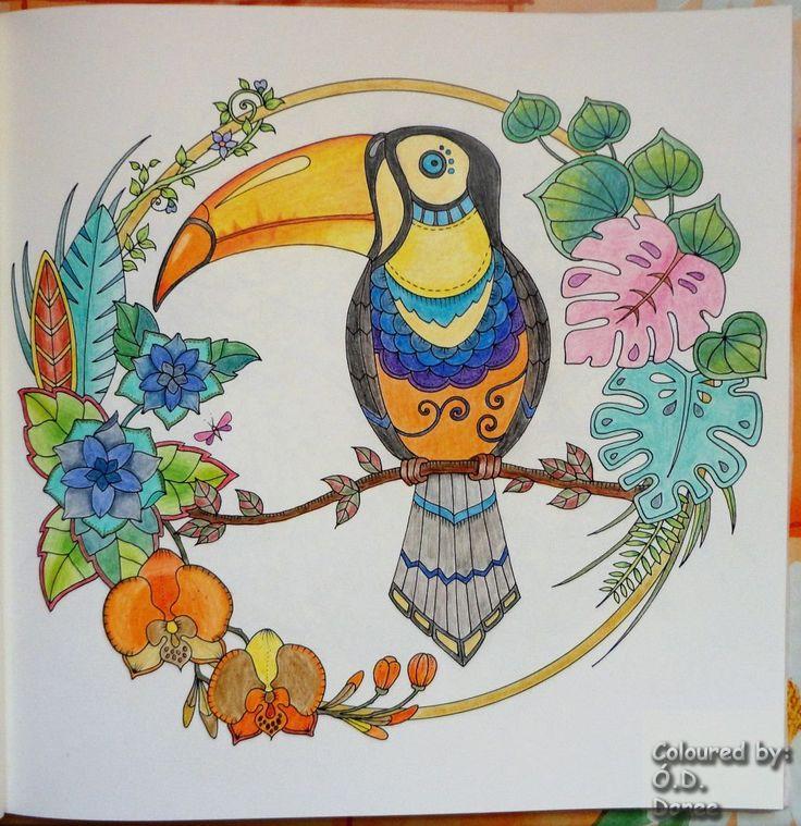Mágikus Dzsungel - Tukán  Készült: Kores ceruzák  Magical Jungle - Tucan Coloured with Kores pencils