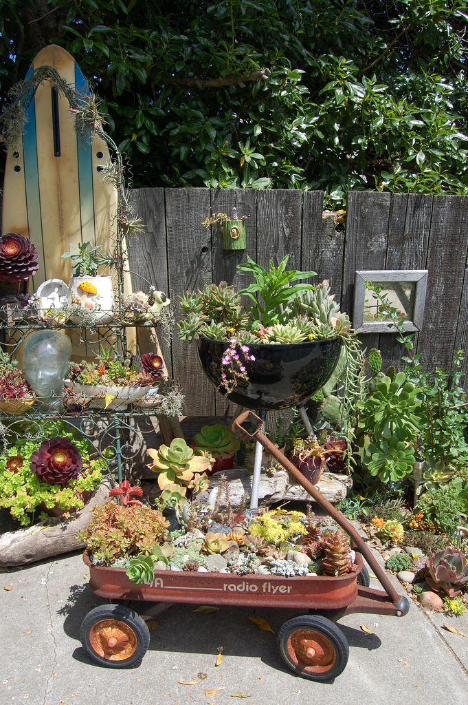 succulents in containers - I love the old barbeque turned planter idea!