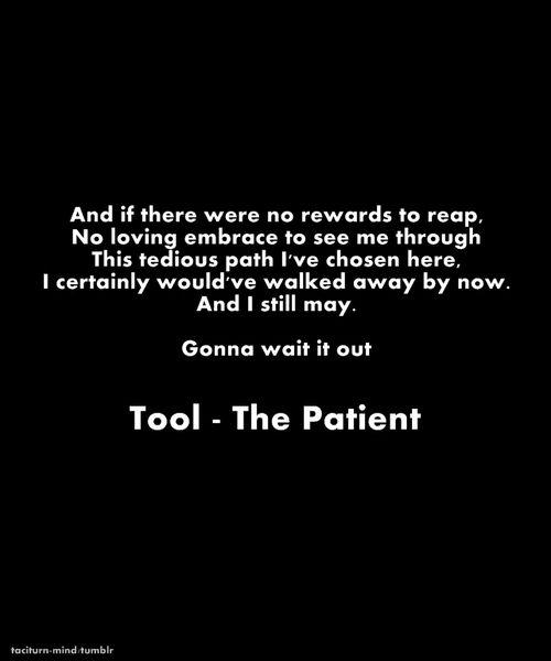 See Tool live again