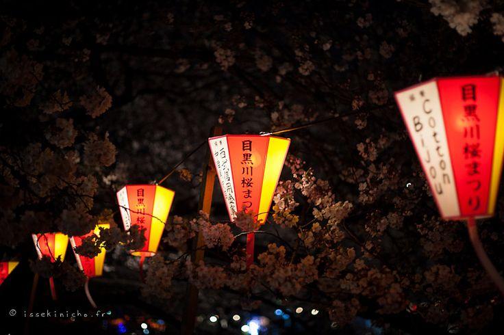 http://www.issekinicho.fr/blog-japon/wp-content/gallery/hanami-meguro2012/hanami_meguro2012-23.jpg
