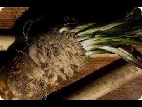 Elimina arrugas lunares verrugas espinillas manchas marcas en piel y cicatriz - VER VÍDEO -> http://quehubocolombia.com/elimina-arrugas-lunares-verrugas-espinillas-manchas-marcas-en-piel-y-cicatriz    Créditos de vídeo a Popular on YouTube – Colombia YouTube channel