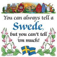 Swedish Souvenirs Magnet Tile (Tell Swede)