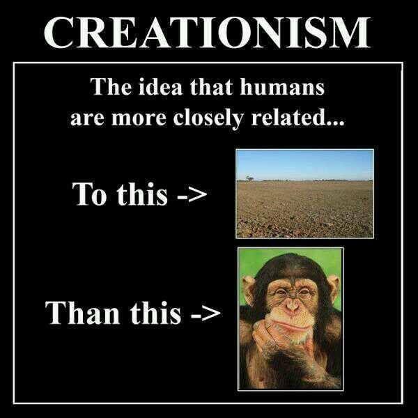 revolution vs evolution essay