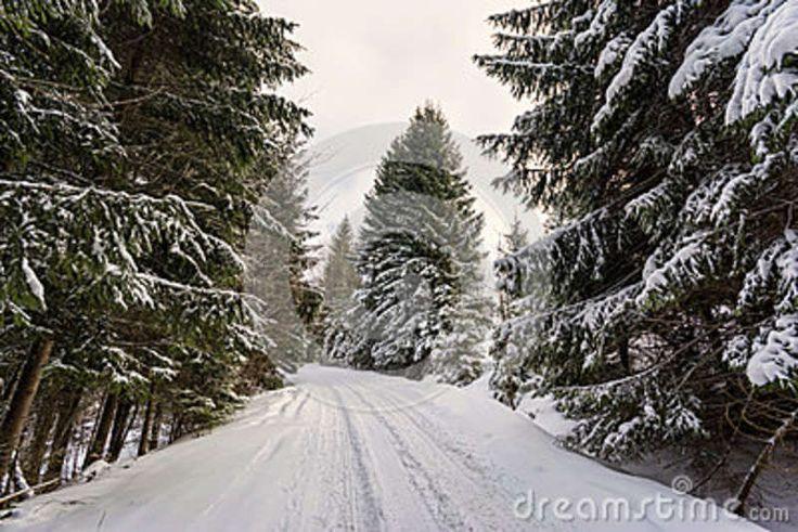 Winter landscape, Piricske, Miercurea Ciuc / Csikszereda, Harghita County, Romania