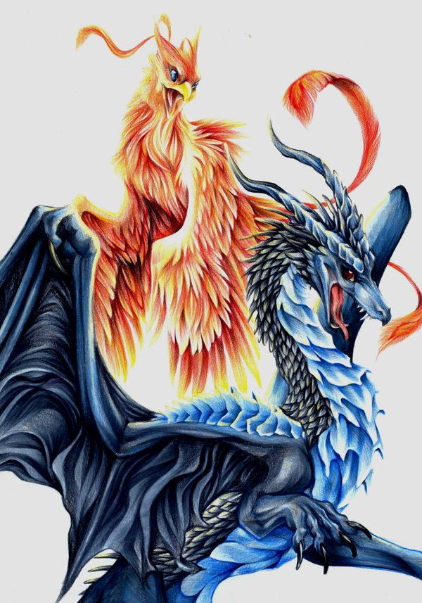 dragon vs phoenix - Cerca con Google