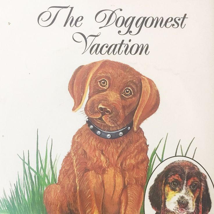 The Doggonest Vacation by Richard Lynn Stack. Vintage book circa 1990. First Edition, signed by author. Children's fiction. Dog Lover
