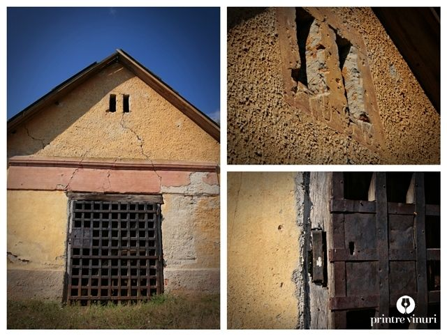 Pivnita din 1936 in Pir (jud. Satu-Mare, Romania) / Wine cellar (1936) from Pir (Satu-Mare county, Romania)