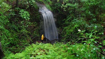 Falling Waters Falls    Chipley, Florida (73 feet) The highest waterfall in Florida may also be the lowest
