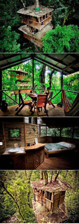 Son casas de árboles. Costa Rica tiene muchas casas divertidas. Se puede trepar las casas.