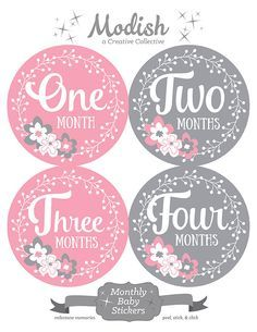 FREE GIFT, Baby Month Stickers Girl, Monthly Baby Stickers Girl, Baby Girl Month Stickers, Flowers, Pink, Gray, Grey