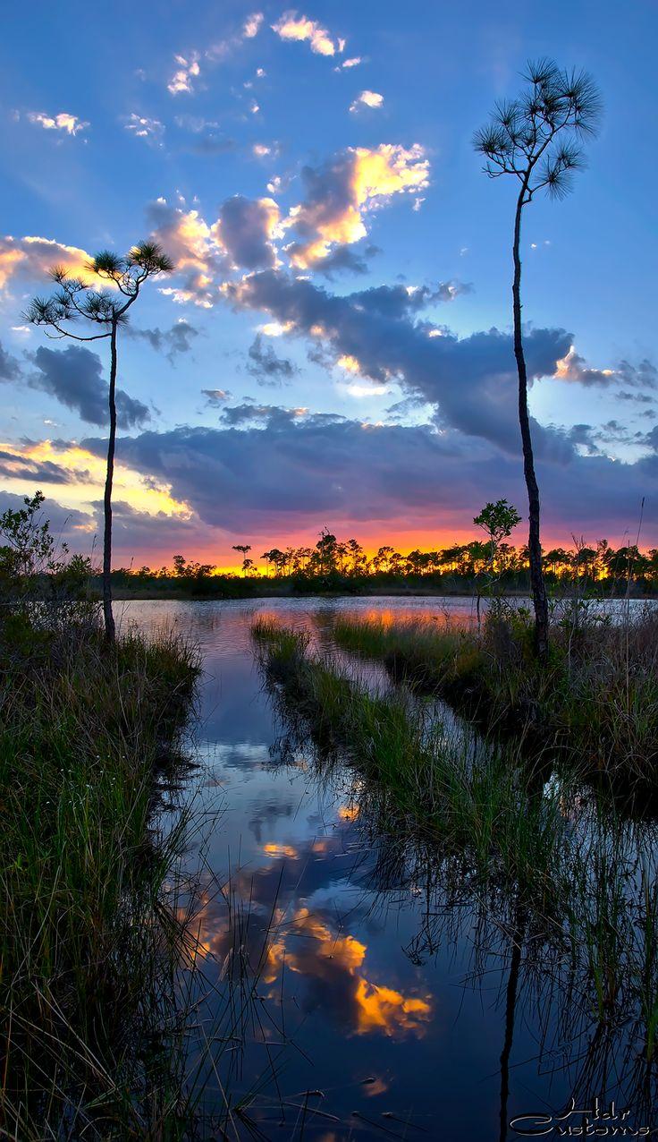 florida-wetlands-sunset