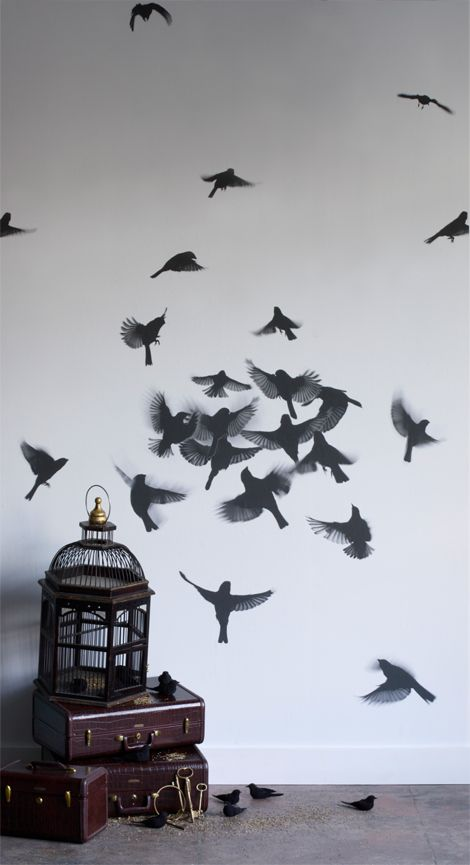 "Bird Wall Paper. Very interesting! Especially if you have seen ""The Birds""!"