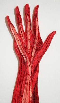 muscle structure of the hand by Sarah Yakawonis