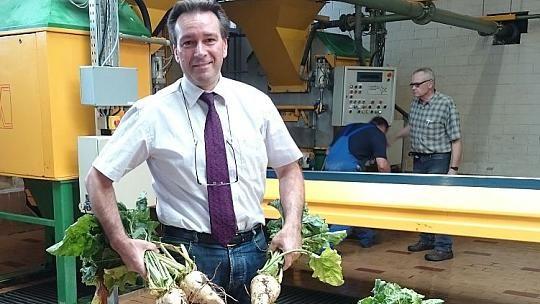 """Die Zuckerrübe stammt aus dem Mittelmeerraum und kann mit höheren Temperaturen gut umgehen. Was auch für die auf hiesige Verhältnisse gezüchteten Pflanzen gilt, die in der Jülicher Börde """"gesegnete Böden und milde Witterungsverhältnisse"""" vorfinden."""