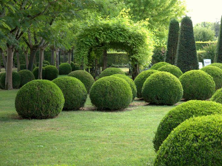 SOUND: http://www.ruspeach.com/en/news/11234/     Самшит - это ядовитое вечнозеленое растение, которое используется для декора в садах и парках. Это одно из самых древних декоративных растений, которое позволяет создавать живые изгороди и бордюры, а также причудливые фигуры. Цена дре�