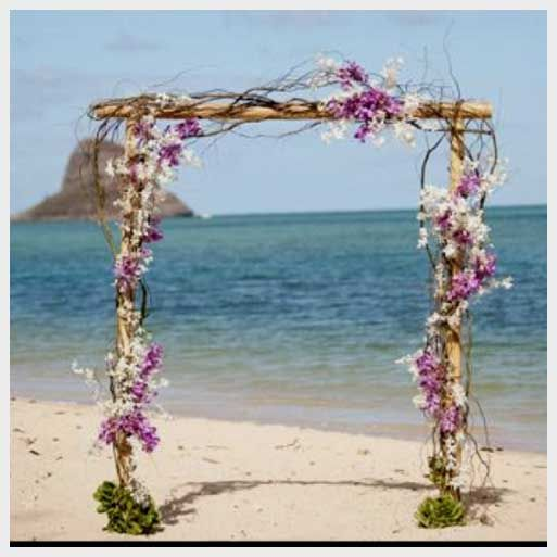 beach-wedding-arch-ideas.jpg 513×513 pixels