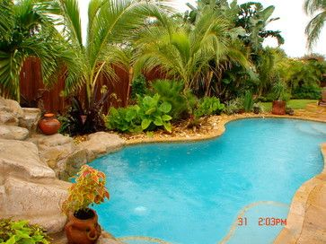 Pool Tropical Landscaping Ideas best 25+ tropical pool landscaping ideas only on pinterest | pool