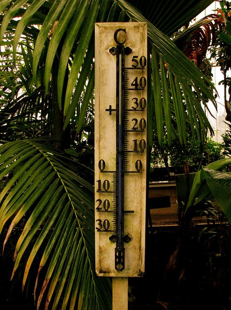 15 best thermometer images on pinterest