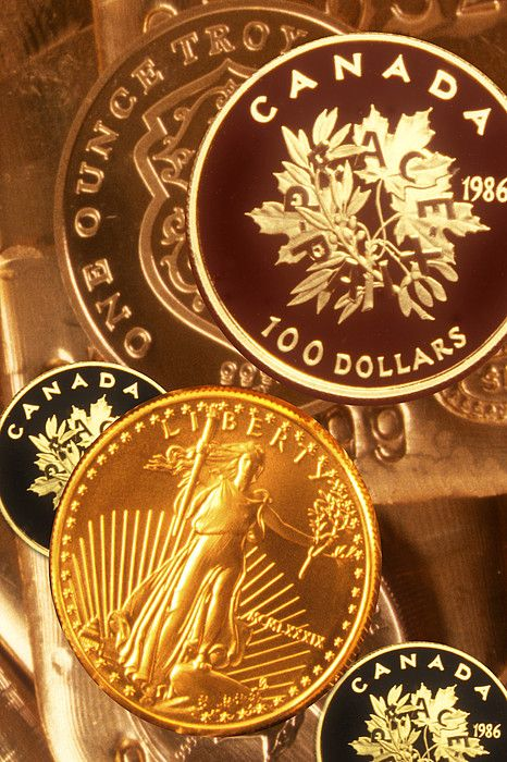 One Troy Ounce Us And Canadian Gold Coins by Lyle Leduc