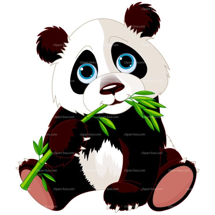 CLIPART PANDA EATING BAMBOO | Royalty free vector design
